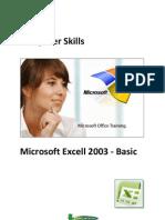 Curs Microsoft Excel 2003 Basic