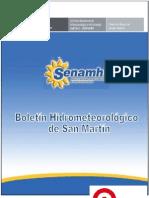 Boletin San Martin Marzo-2013