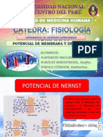 Diapositivas Fmh III Semestre