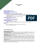 Indrumar de Afaceri Belgia 2009_200976383642