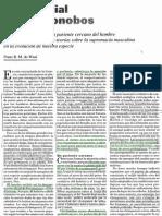 3 bonobos.pdf