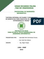 Estructura de la TESIS V05.docx