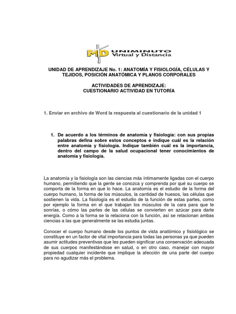 Excelente Cuál Es La Relación Entre La Anatomía Y La Fisiología ...