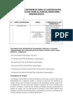 TÉRMINOS DE REFERENCIA PARA LA CONTRATACIÓN DEL ARQUEÓLOGO PARA EL PLAN DE MONITOREO ARQUEOLÓGICO