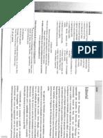 flavia lemos.pdf