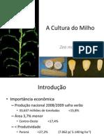 A Cultura Do Milho