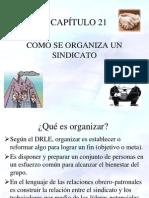 Capitulo 21 Cómo se organiza un sindicato