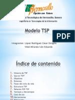 modelotsp-111019210331-phpapp02