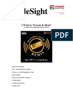 HindeSight Investor Letter April 2013 - I Want to Scream Shout