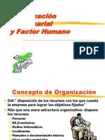 T1 - Organizacion