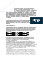RECEPTORES111.docx