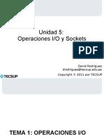 UNIDAD 5 - IO y Sockets.pdf