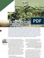 La Practica de la Agricultura Sinergica para huertos familiares y comerciales.pdf