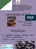 Liofilização de açaí