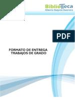 Formato_entrega_udenar