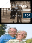 Cultura Del Envejecimiento y Vejez