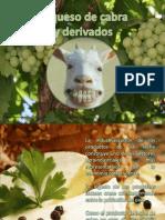 Leche de Cabra y Derivados