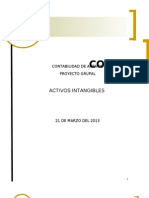 Proyecto Activos Intangibles Etapa Uno (Nayibe)