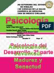 Psicologia Del Desarrollo (2)
