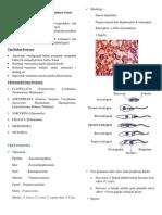 Resume Parasitologi Uas