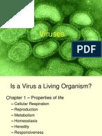 Viruses and HIV