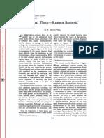 Normal Flora Rumen Bacteria