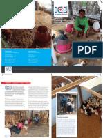 ICS Factfolder Poultry Farming Cambodia