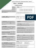 2 Bach Tema 1 Matrices Curso 08 09