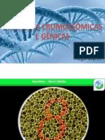Mutações Gênicas e Cromossômicas.pdf