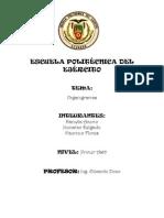 Organigrama Estructural y Funcional