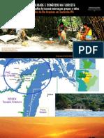 Redes de Sociacilidade e Comercio Na Floresta.pptx