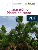 MATARRATON O MADRE DE CACAO.pdf