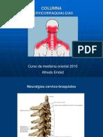 Cervicobraquialgias 2 c