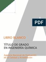 libroblanco_ingquimica_def.pdf