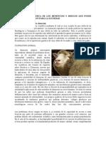 Clonacion y Fertilizacion Invitro