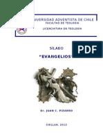 silabo evangelios 2013 resolviendo
