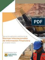 PDF Manual NIIF