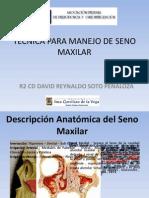 REVISTA DE REVISTAS. TÉCNICAS PARA MANEJO DE SENO MAXILAR