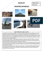 FICHA Nº5, DESASTRES NATURALES (1)