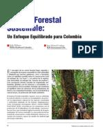 Forestal Manejo