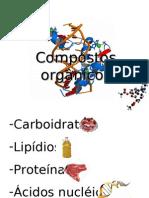 compostos organicos