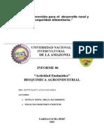 Informe 06 de Bioquimica AGroindustrial