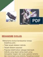 Bab 7 Evolusi