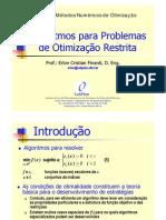 06 - Algoritmos Para Otimizacao Restrita