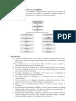 MANEJO HIGIENICO DE LOS ALIMENTOS (RCEPCIÓN Y ALMACENAMIENTO)