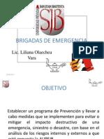 Brigadas Emergencia