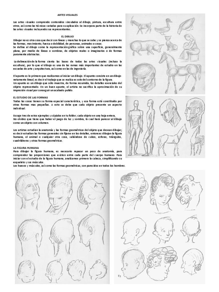 Vistoso Anatomía Para Artistas Aplicación Colección de Imágenes ...