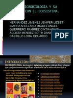 microbiologiaambiental-110127184600-phpapp01.pptx