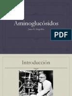 Aminoglucosidos_UIDE