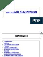 sistemadealimentacion-110802151524-phpapp02